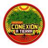 Conexion a Tierra Almagro