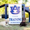 Auburn University's Canine Performance Sciences