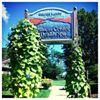Finger Lakes Wellness Center & Health Spa