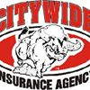 Citywide Insurance Agency, Inc.