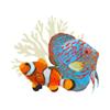 Aqua Life Aquarium