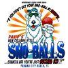 David's Sno-Balls