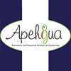 Asociación de Pequeños Hoteles de Guatemala