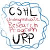 Undergraduate Research Program at CSHL (URP)