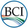 Bruce Clay India