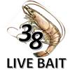 38 Live Bait