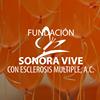 Fundación Sonora Vive con Esclerosis Múltiple, A. C.