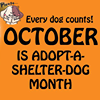 Vermilion County Animal Shelter Offical Page