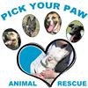 Pick Your Paw Animal Rescue