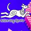 Action Dog Sports