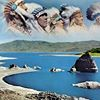 Pyramid Lake Paiute Tribe