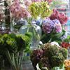 Floral Designs of Westchester