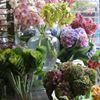 Floral Designs of Westchester
