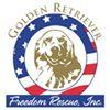 Golden Retriever Freedom Rescue