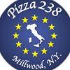 Pizza238