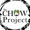 The CHOW Project (Community Health Outreach Work to Prevent HIV/AIDS)
