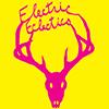 Electric Eclectics Festival