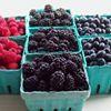 Mountain Home Berry Farm
