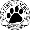 SCAT Street Cat Rescue