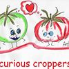 Curious Croppers
