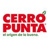 Cerro Punta S.A