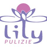 Lily Pulizie