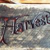 Harvest Store & Kitchen
