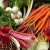 Woodland Gardens Organic Farm