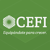 Commercial Equipment Finance Inc. (CEFI)
