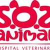 SOS Animal Hospital Veterinário de Viseu