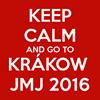 JMJ Cracovie 2016 diocèse d'autun