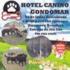 Hotel Canino Gondomar- Quinta Diamante