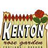 Kenton Rose Garden