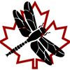 Canadian Bushcraft