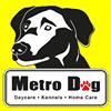 Metro Dog Seattle