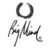 Big Mind/Big Heart