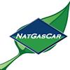 NatGasCar