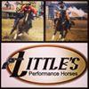 Little's Performance Horses