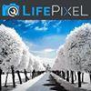 Life Pixel Infrared