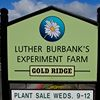 Luther Burbank's Gold Ridge Experiment Farm