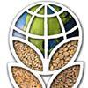 U.S. Wheat