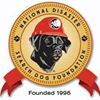 National Disaster Search Dog Foundation thumb