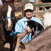 High Horse Ranch Veterinary Clinic