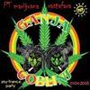 PT Marijuana ladang ganja rastafara uye