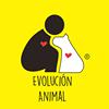 Evolución A.C.