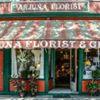 Arjuna Florist & Gifts