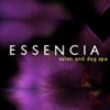 Essencia Salon and Day Spa