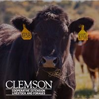Clemson Extension Livestock and Forages