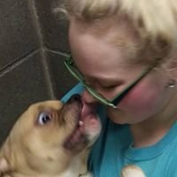 Humane Society of Noble County, Inc., Indiana