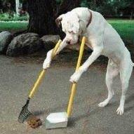Poop Away Inc.